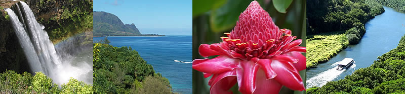 The Best of Kauai Tour - Waterfalls, Bali Hai, Tropical Flora and the Wailua River